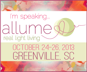 speaking at allume 2013 - erin ulrich